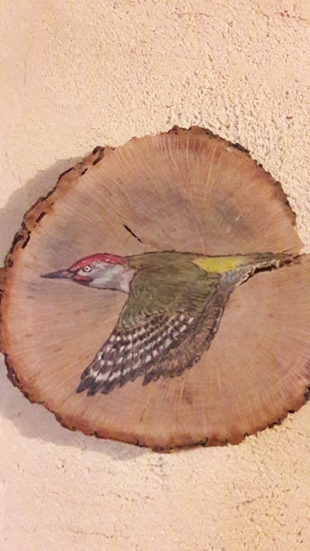 Iberian green woodpecker on Oak / Pito real ibérico sobre Roble. SOLD / VENDIDO