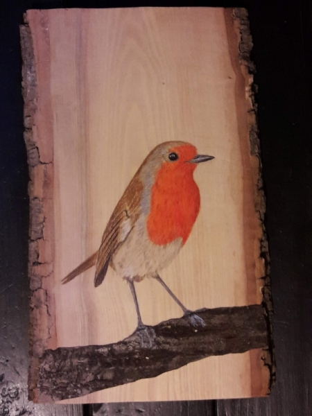 European Robin on Ash and Cherry tree / Petirrojo sobre Fresno y Cerezo . VENDIDO / SOLD