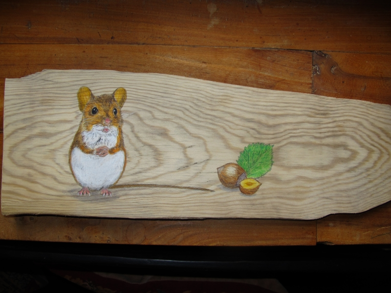 Wood mouse on black poplar  / Ratón de campo sobre chopo..SOLD / VENDIDO
