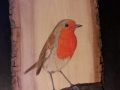 European Robin on Ash and Cherry tree / Petirrojo sobre Fresno y Cerezo . VENDIDO / SOLD