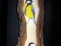 Great and Coal tit on Ash / Carboneros común y garrapinos sobre Fresno.  VENDIDO / SOLD