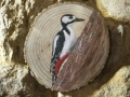 Great spotted woodpecker on Oak / Pico picapinos sobre Roble. SOLD / VENDIDO