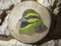 Cirl and Corn Buntings on Oak / Escribanos soteño y triguero sobre Roble. SOLD / VENDIDO