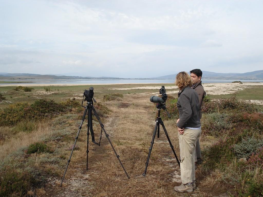 Birding  P.N.Alto Ebro. MCBIRDING 009