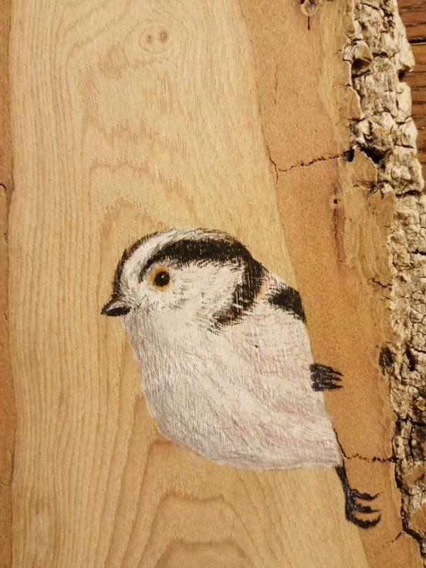 Long-tailed tit on Oak / Mito sobre Roble (Detalle)